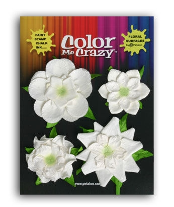 Bild 1 von Flowers Color Me Crazy Flower Medley
