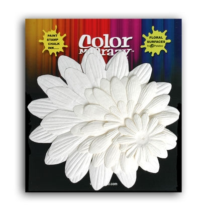 Bild 1 von Flowers Color Me Crazy 6 Giant Daisy Layers