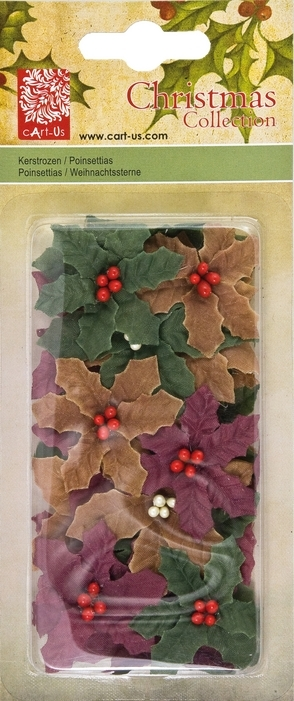 Bild 1 von Poinsettias Christmas Collection