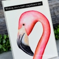 Bild 2 von Colorado Craft Company Clear Stamps - Big & Bold~Tickled Pink Flamingo