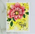 Bild 3 von Colorado Craft Company Clear Stamps - Big & Bold~Daisy & Dahlia