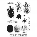 Bild 2 von Hero Arts Clear Stamps Color Layering Pineapple Ananas