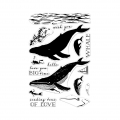 Hero-Arts-Clear-Stamps-Color-Layering-Blue-Whale