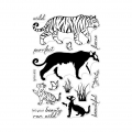Hero-Arts-Clear-Stamps-Color-Layering-Bengal-Tigers
