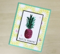 Bild 3 von Hero Arts Clear Stamps Color Layering Pineapple Ananas