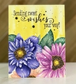 Bild 4 von Colorado Craft Company Clear Stamps - Big & Bold~Daisy & Dahlia
